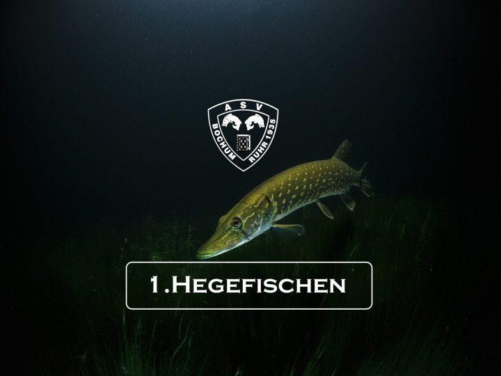 10.05.2020 1.Vereinshegefischen